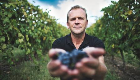 Behind the Wines & Vines