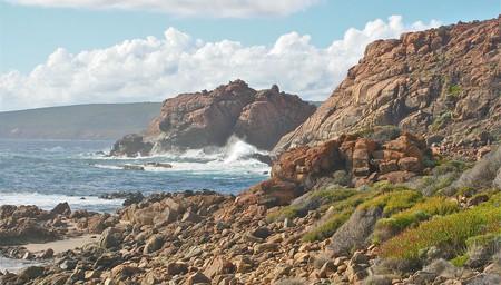 Cape to Vine Day Trip