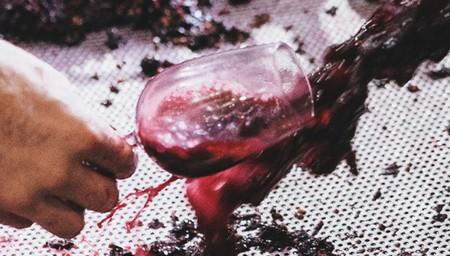 Vintner Unearthed - Cabernet Blending & Dinner