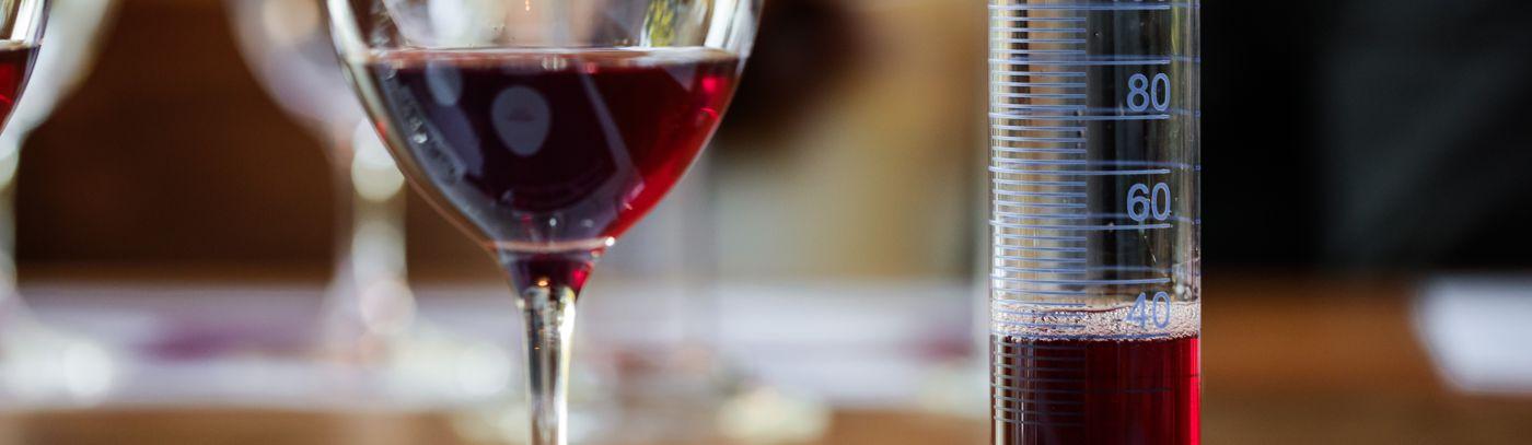 Wine & Food Pairing, Behind the Scenes Tour & Wine Blending