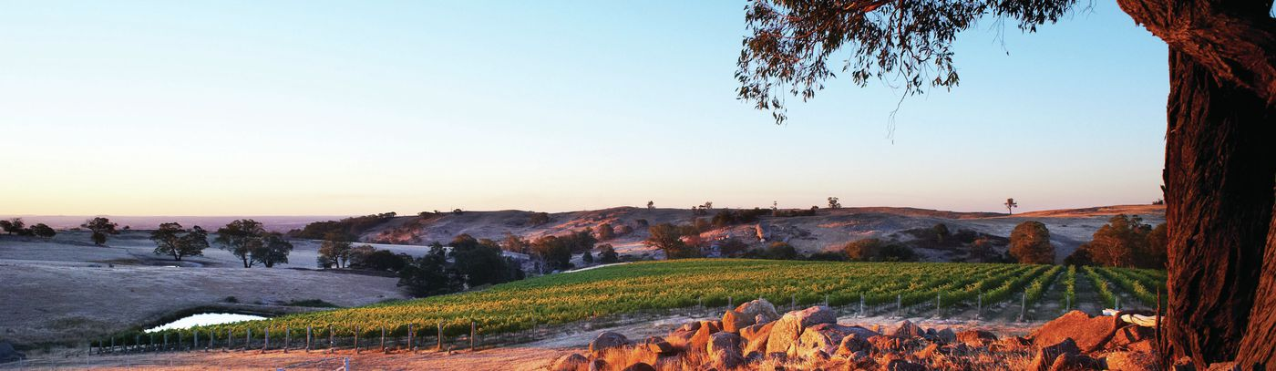 Flavours of Central Victoria