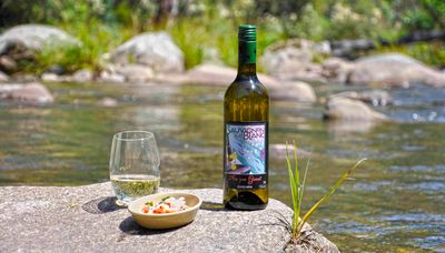 Trout & Sauvignon Blanc - Are You Game?