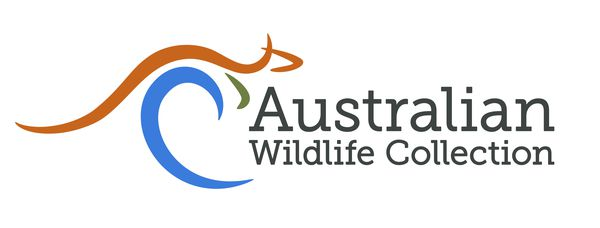 Awc_Logo_L_Colour