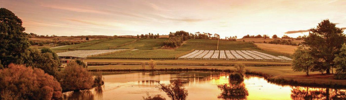 Effervescence Tasmania
