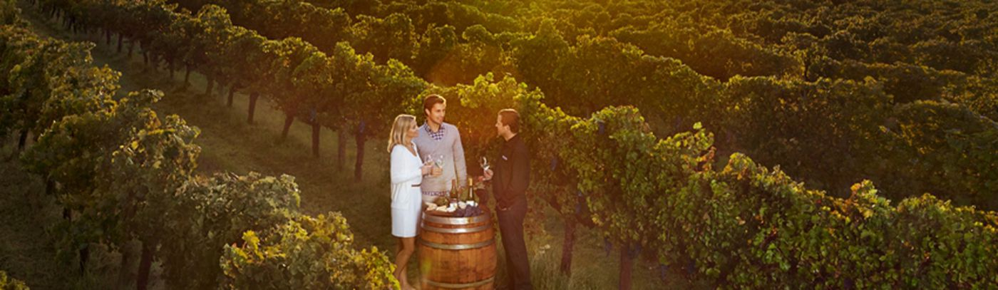 Our Guide to Margaret River