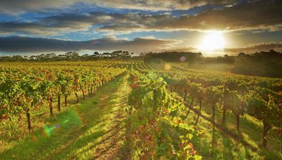 Live like a local in Margaret River