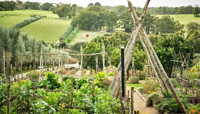 What's growing on at Montalto