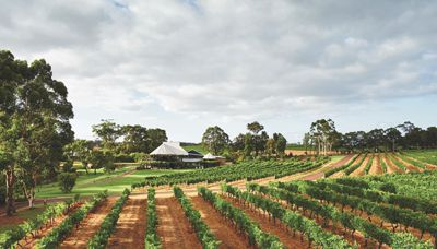 Summer in Margaret River - wine paradise!